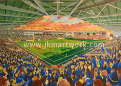 halliwell jones stadium a3 size print (1)